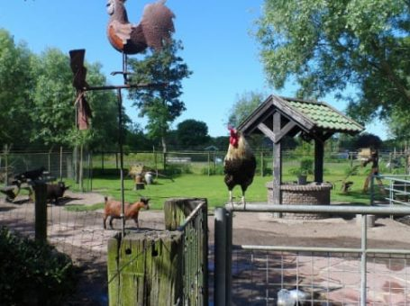 Kinderboerderij 't Dierenduintje